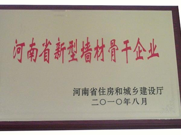 河南省新型墙村骨干企业